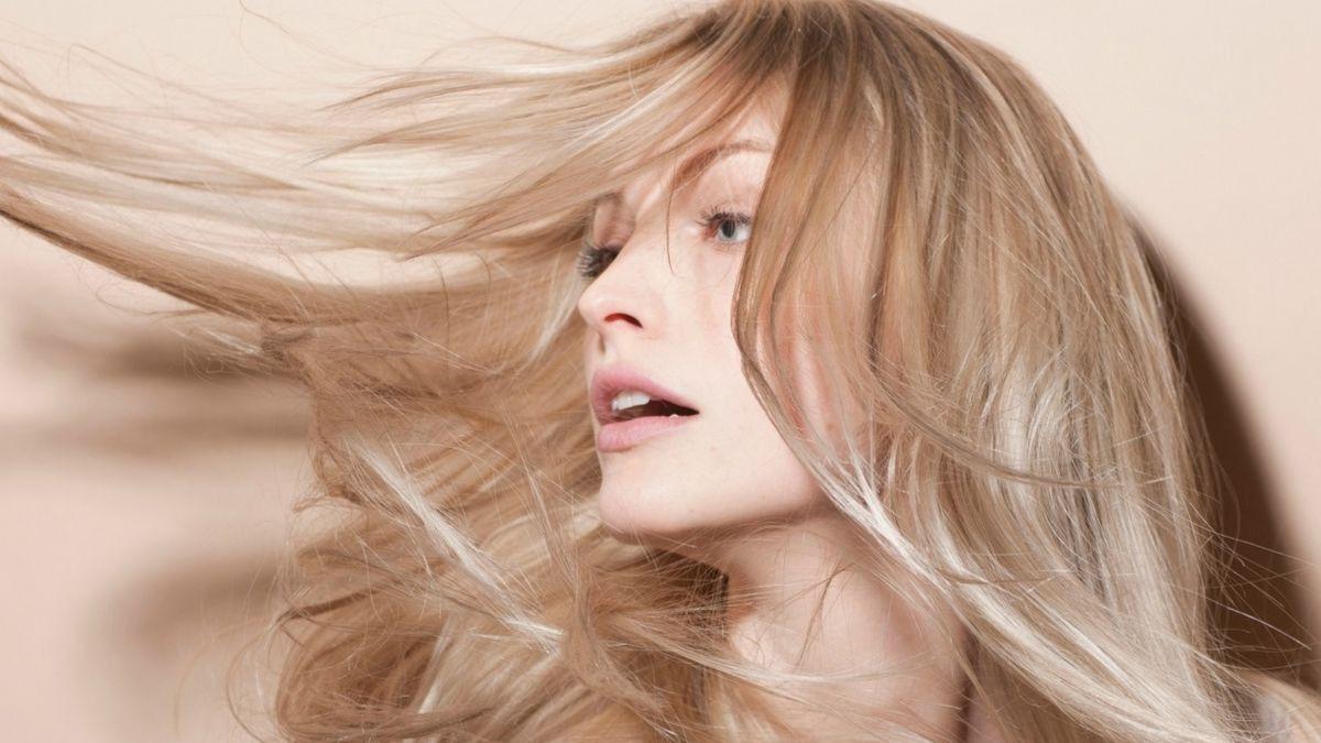 Los 5 mejores aceites vegetales para cuidar el pelo seco