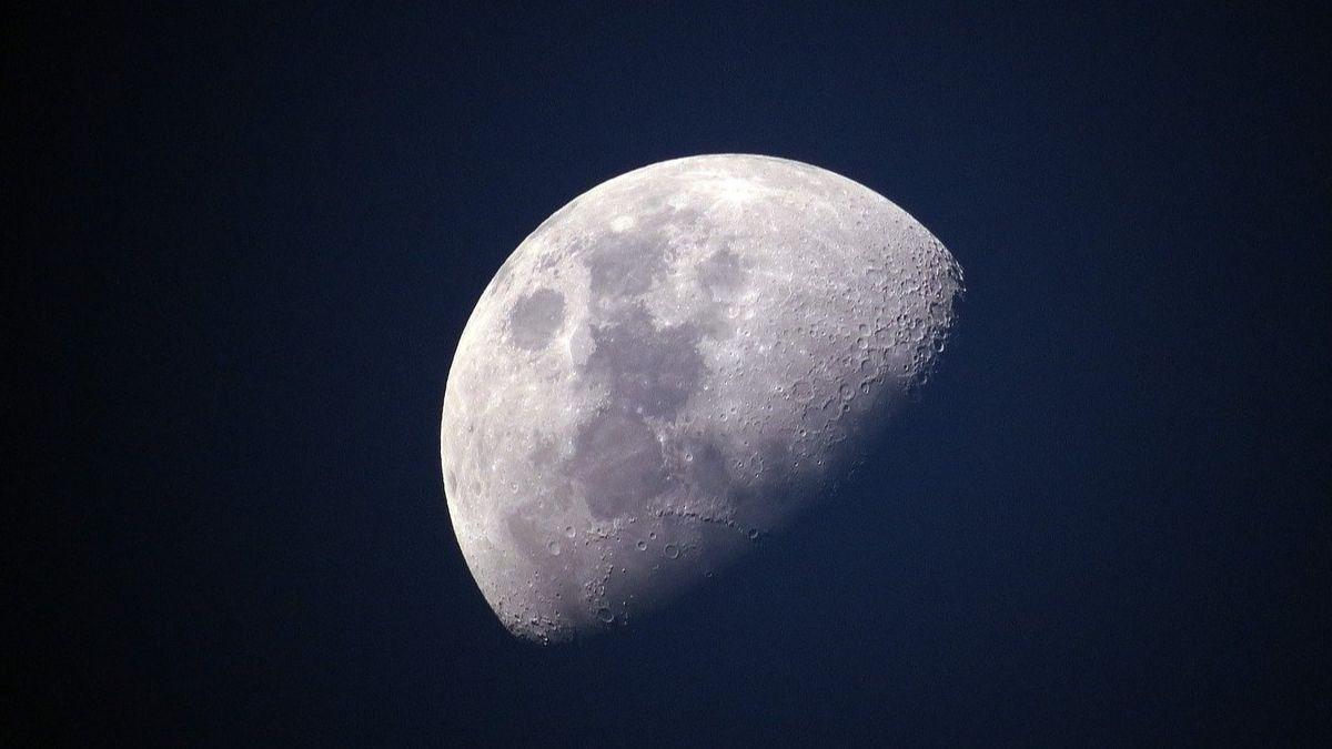 Investigadores proponen construir un 'arca de Noé' en la Luna con 6,7 millones de espermatozoides y óvulos