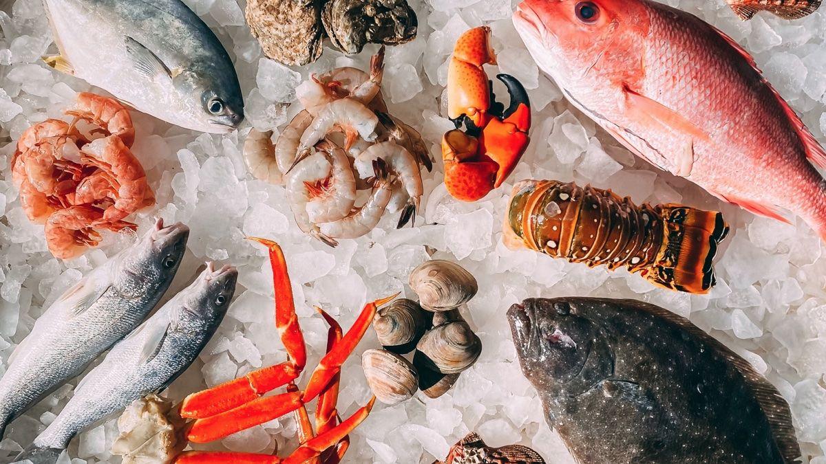 Estos son los 5 pescados que tienen más mercurio